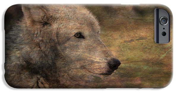 Native American Spirit Portrait iPhone Cases - Spirit Of The Wolf iPhone Case by Deena Stoddard