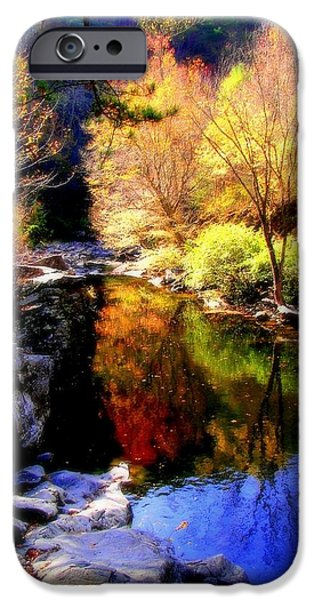 Smokey Mountains iPhone Cases - SPLENDOR of AUTUMN iPhone Case by Karen Wiles