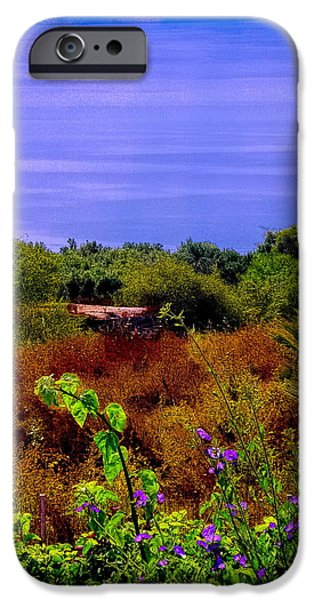 Splendor of the Mount of Beatitudes and the Sea of Galilee iPhone Case by Sandra Pena de Ortiz