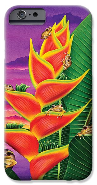 Amphibian iPhone Cases - Split Level Sunset iPhone Case by Carolyn Steele