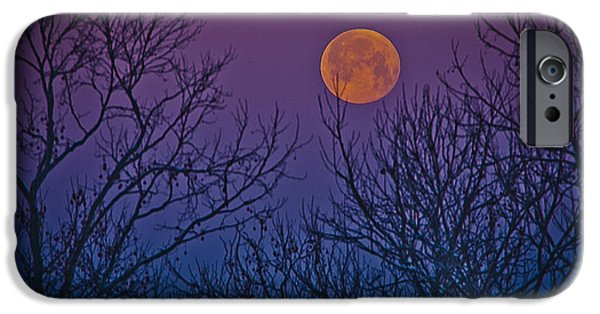 Moon Pyrography iPhone Cases - Spooky Beauty iPhone Case by Shirley Tinkham