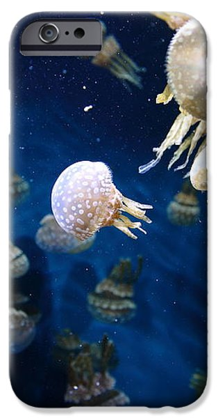 Spotted Jelly Fish 5D24951 iPhone Case by Wingsdomain Art and Photography