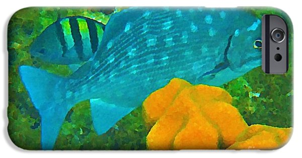Fish On A Reef iPhone Cases - Spotted Surgeon Fish iPhone Case by John Malone