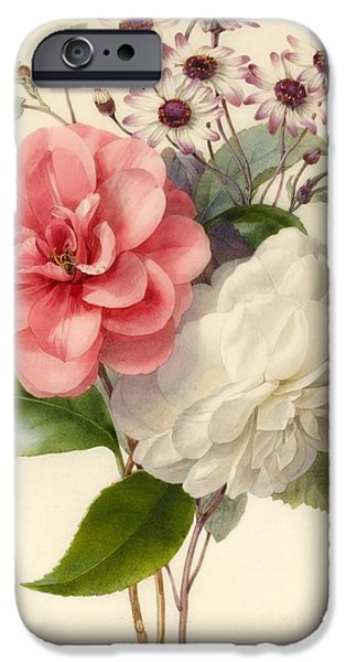 Flora Drawings iPhone Cases - Spray of Three Flowers iPhone Case by Marie Anne