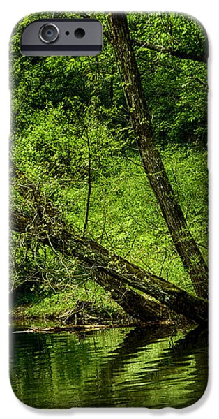 Spring along West Fork River iPhone Case by Thomas R Fletcher