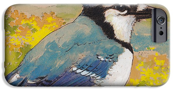 Corvid iPhone Cases - Spring Blue Jay 2 iPhone Case by Tracie Thompson
