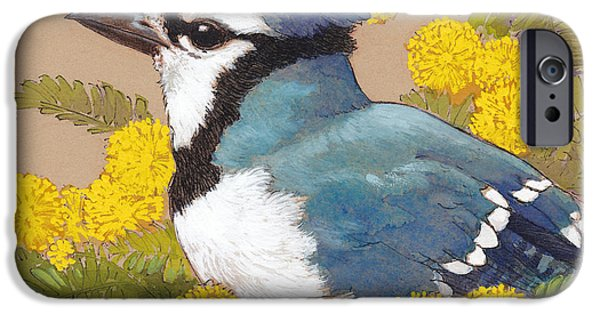 Blue Jay iPhone Cases - Spring Blue Jay 4 iPhone Case by Tracie Thompson