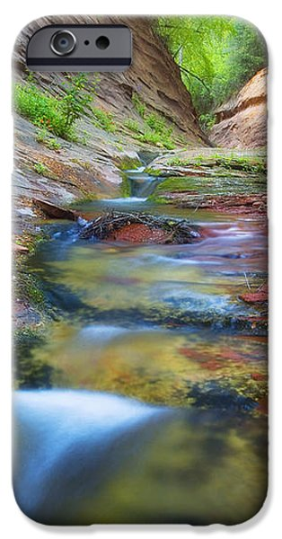 Spring Cascades iPhone Case by Peter Coskun