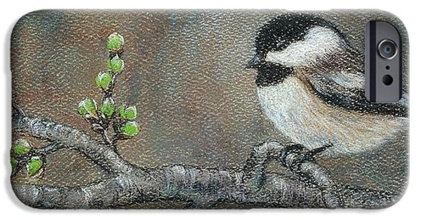 Cherry Blossoms Pastels iPhone Cases - Spring Chickadee iPhone Case by Jeanne Beutler