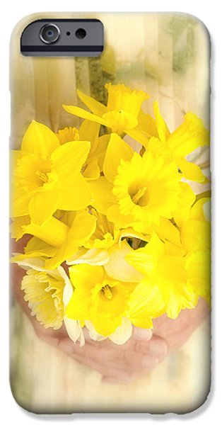 Genuine iPhone Cases - Spring Daffodils iPhone Case by Edward Fielding