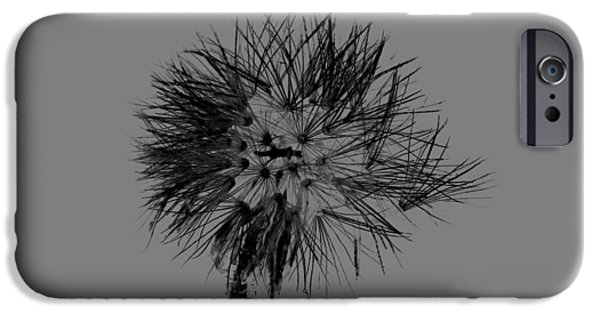 Copy Mixed Media iPhone Cases - Spring dandelion iPhone Case by Toppart Sweden