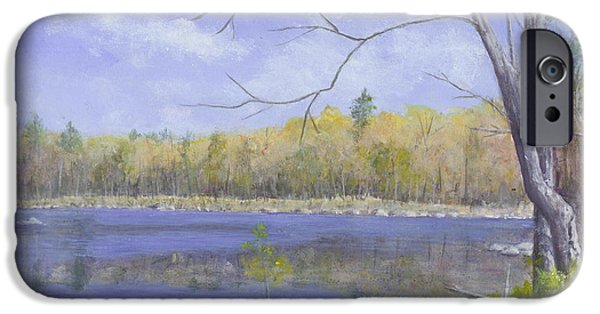 Nature Center Pond Paintings iPhone Cases - Spring Day iPhone Case by Nan McCarthy