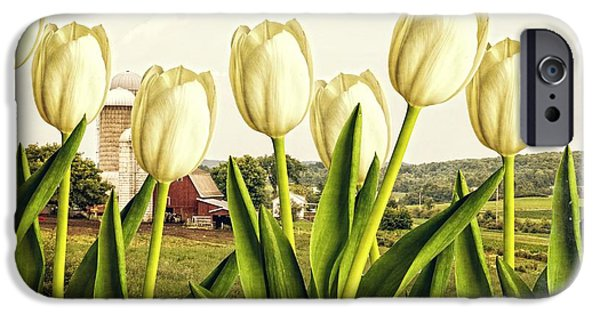 Element Photographs iPhone Cases - Spring Down on the Farm iPhone Case by Edward Fielding