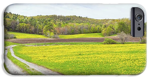 Rural Maine Roads iPhone Cases - Spring Farm Landscape With Dirt Road And Dandelions Maine iPhone Case by Keith Webber Jr