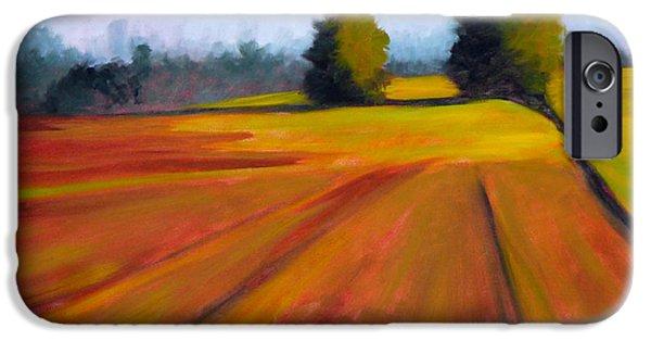 Business Paintings iPhone Cases - Spring Field iPhone Case by Nancy Merkle