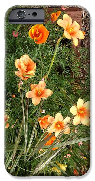 Alcatraz iPhone Cases - Spring Flowers Grow on the Rock iPhone Case by Christy Gendalia