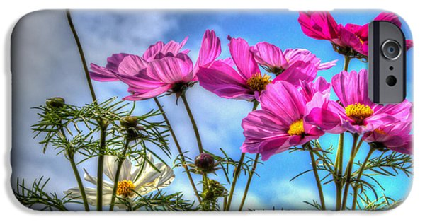 Meadow Photographs iPhone Cases - Spring In Full Swing iPhone Case by Heidi Smith