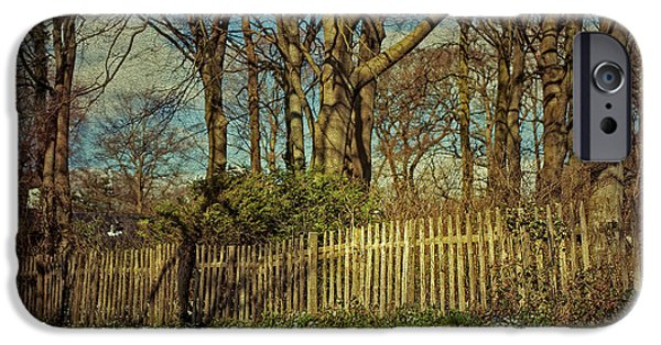 Nederland iPhone Cases - Spring in Holland iPhone Case by Jenny Rainbow
