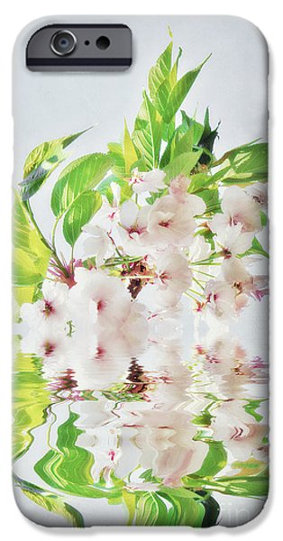 Cherry Blossoms Mixed Media iPhone Cases - Spring Inspiration iPhone Case by Angela Doelling AD DESIGN Photo and PhotoArt