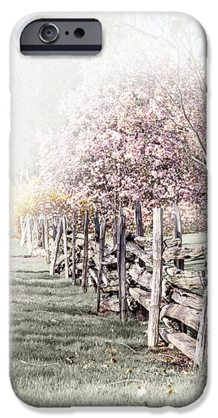 Spring landscape with fence iPhone Case by Elena Elisseeva