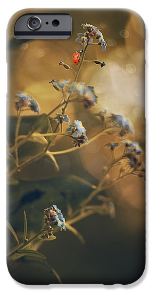 Ladybug iPhone Cases - Spring  iPhone Case by Magda  Bognar