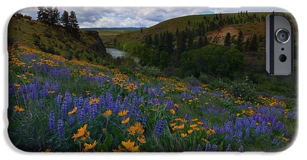 Yakima Valley iPhone Cases - Spring on the Yakima iPhone Case by Mike  Dawson