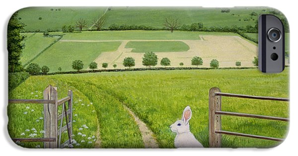 Field iPhone Cases - Spring Rabbit iPhone Case by Ditz