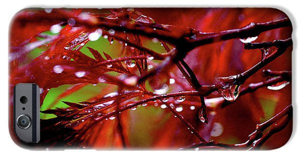 Rain iPhone Cases - Spring Rain iPhone Case by Rona Black