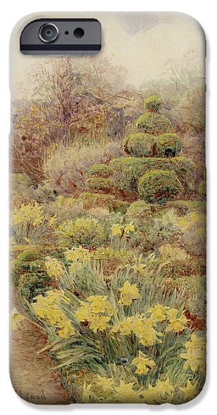 Flora Drawings iPhone Cases - Spring   Raunds Cliffe iPhone Case by George Samuel Elgood