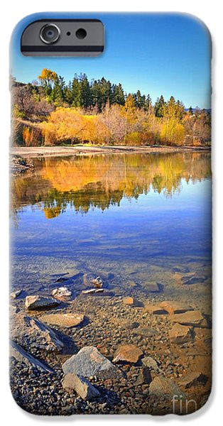 Willow Lake iPhone Cases - Spring Reflections iPhone Case by Tara Turner