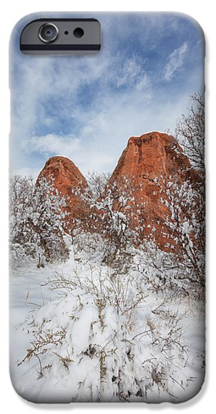 Winter Scene iPhone Cases - Spring Snow iPhone Case by Darren  White
