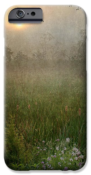 Spring Sunrise In The Valley iPhone Case by Dale Kincaid