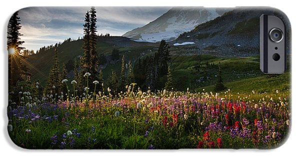 Rainforest iPhone Cases - Spring time at Mt. Rainier Washington iPhone Case by Larry Marshall