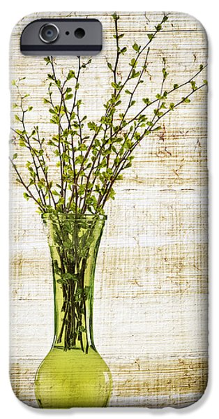 Natural Beauty iPhone Cases - Spring Vase iPhone Case by Elena Elisseeva