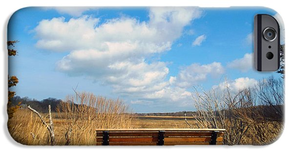 Salt Marsh. New England iPhone Cases - March View iPhone Case by Dianne Cowen