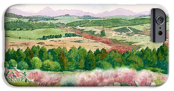 Santa iPhone Cases - Spring View from Del Dios Highway iPhone Case by Mary Helmreich