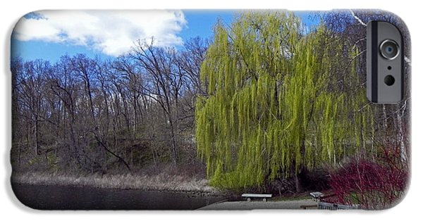 Willow Lake iPhone Cases - Spring Willow iPhone Case by Jodi Adamowicz