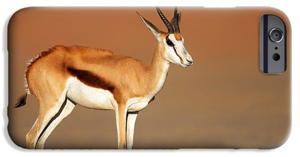 Stand iPhone Cases - Springbok On Sandy Desert Plains iPhone Case by Johan Swanepoel