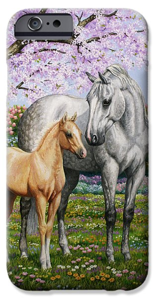 Meadow iPhone Cases - Springs Gift - Mare and Foal iPhone Case by Crista Forest