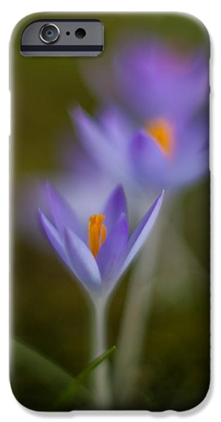 Springs Soft Procession iPhone Case by Mike Reid