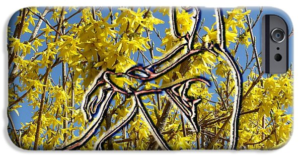 Abstract Expressionism Photographs iPhone Cases - Springtime iPhone Case by Patrick J Murphy