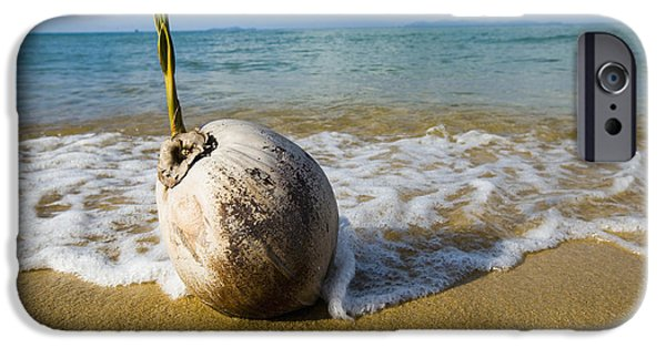 China Beach iPhone Cases - Sprouting Coconut Washed Up On Beach iPhone Case by Naki Kouyioumtzis