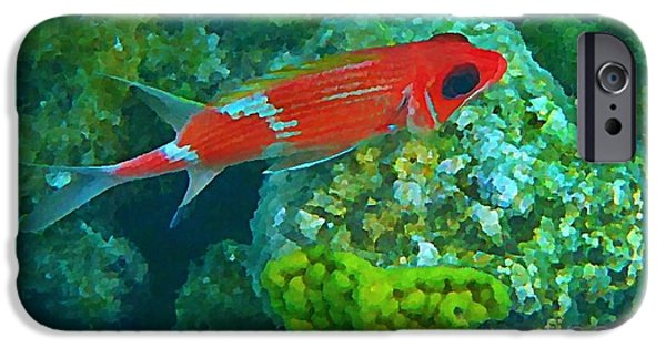 Fish On A Reef iPhone Cases - Squirrel Fish iPhone Case by John Malone