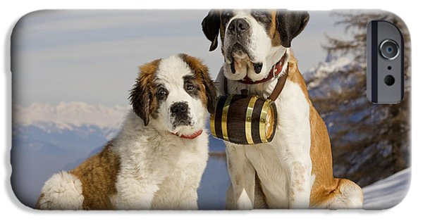 Dog In Landscape iPhone Cases - St Bernard And Puppy iPhone Case by Jean-Michel Labat