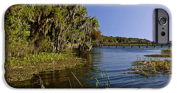 Con iPhone Cases - St Johns River Florida iPhone Case by Christine Till