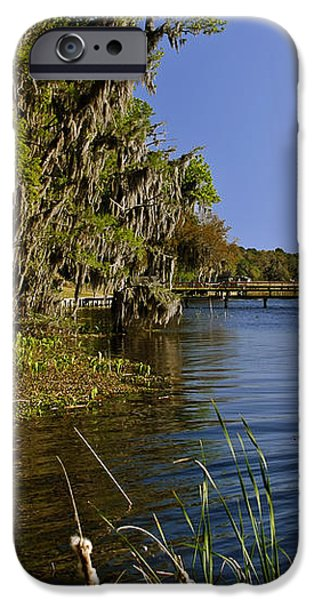 St Johns River Florida iPhone Case by Christine Till