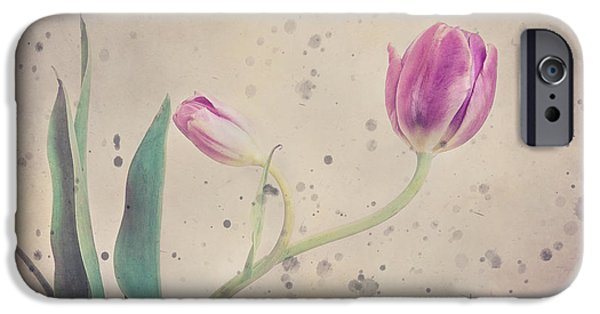 Bloosom iPhone Cases - Stained tulip iPhone Case by Cristina-Velina Ion