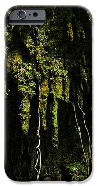 Stalactites At The Entrance To Las Cuevas De Camuy iPhone Case by Sandra Pena de Ortiz