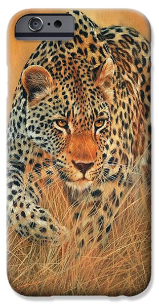 David iPhone Cases - Stalking Leopard iPhone Case by David Stribbling