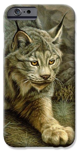 Lynx iPhone Cases - Stalking Lynx iPhone Case by Paul Krapf